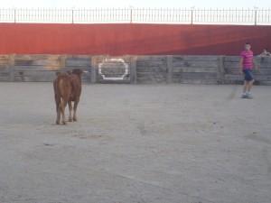 Capeas en Torremocha