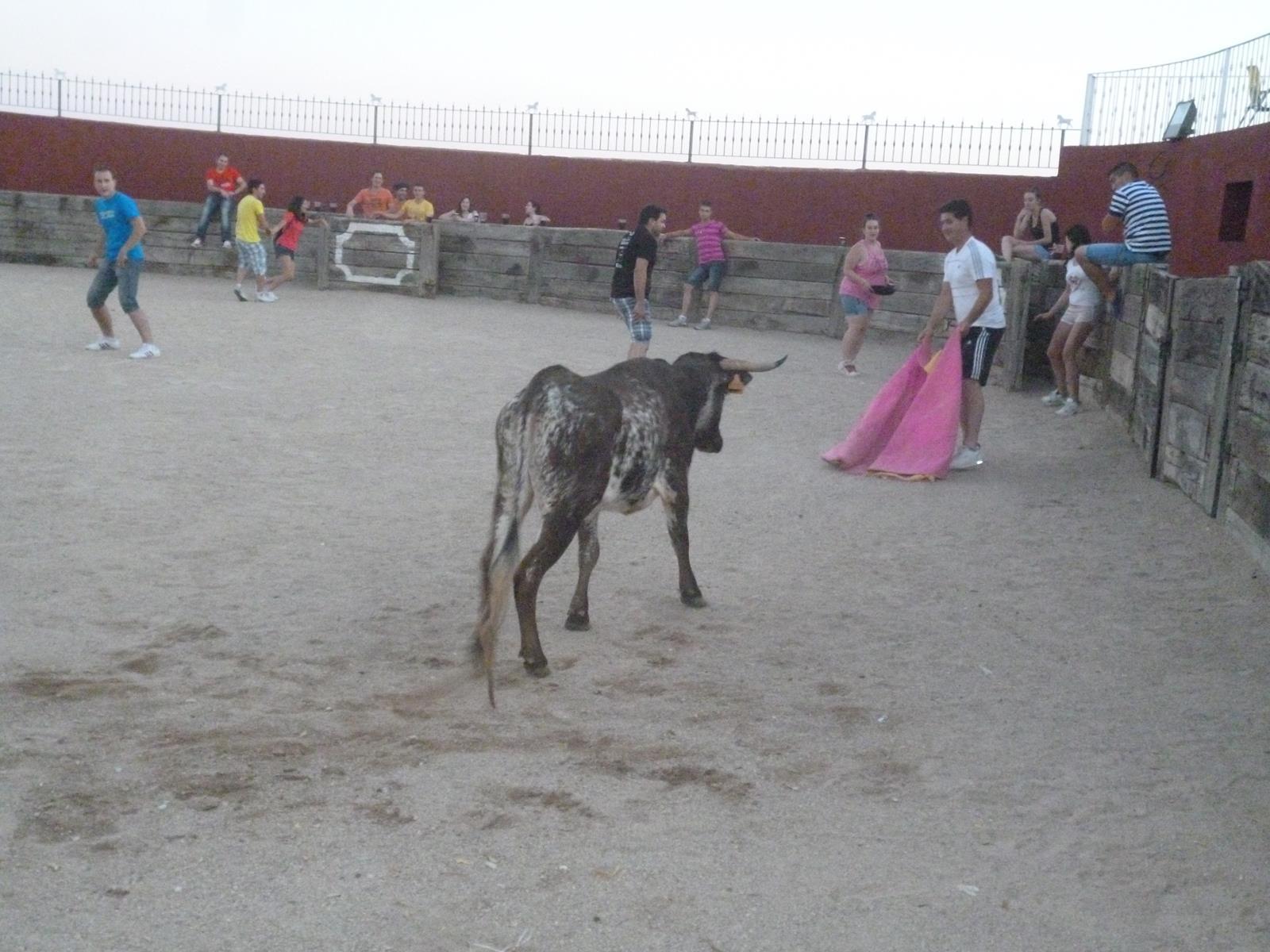 Capeas en Alcorcón